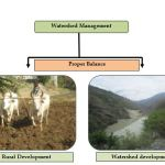 A Proper balance between Rural development and Watershed development is must in Watershed Management