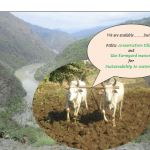 Sustainable watershed interventions