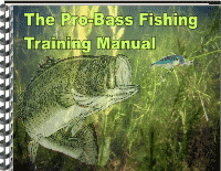 bass fishing with live worms