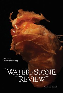 waterstone review, volume 16