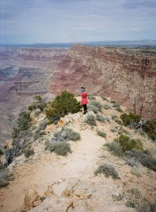 MELISSA KAGERER, Lollie at the Grand Canyon, Arizona, 2016