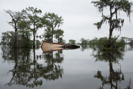 VIRGINIA HANUSIK, Atchafalaya Basin, Louisiana, 2018