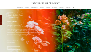 Welcome to Water~Stone Review