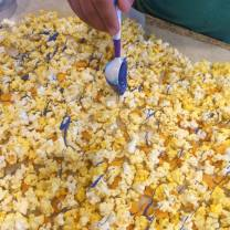 Shark bait popcorn 6