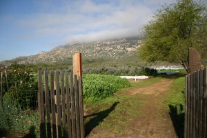 Clouds hang low over Tres Estrellas organic farm on a late winter morning