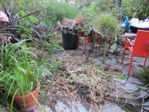 Piles of debris from spring's growth