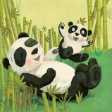 LW_pandas