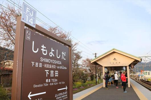 family-kawaguchiko-2-7