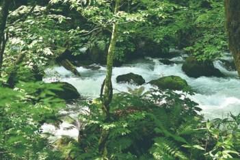 สายน้ำ Shirogane