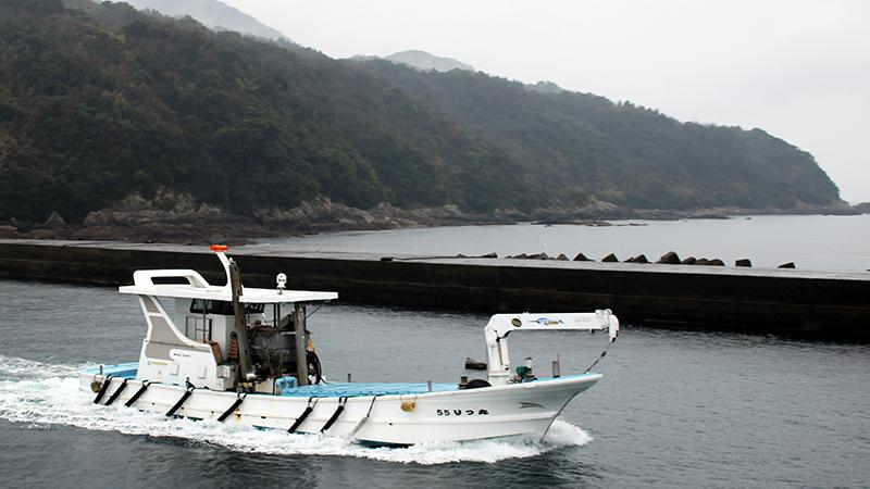 Nejime Port, Kagoshima