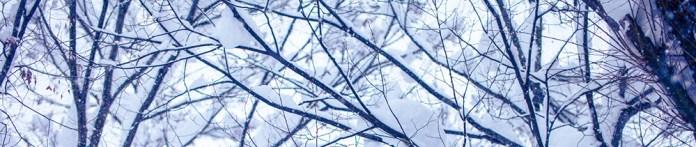 resize snow