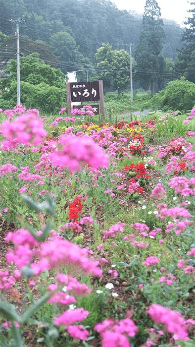 japanese-minshuku-flowers-countryside-japan