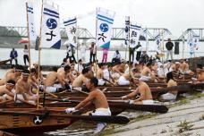 Shingus-man-power-rowing