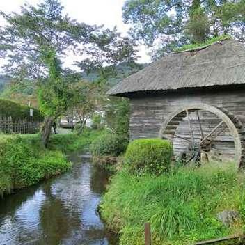 The Holy Waters of Oshino Hakkai 2