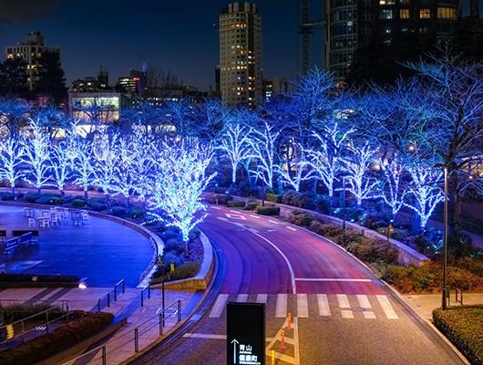 midtown-blue-trees