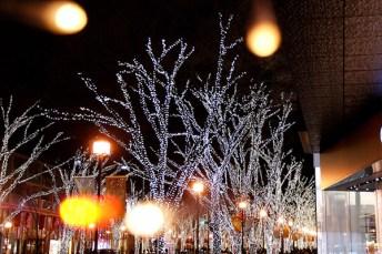 omotesando-lights