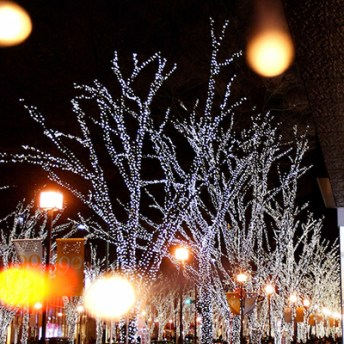 omotesando-lights