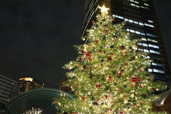 yebisu-christmas-tree