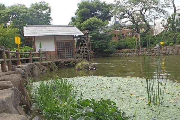 Nabeshima-Shoto-Park