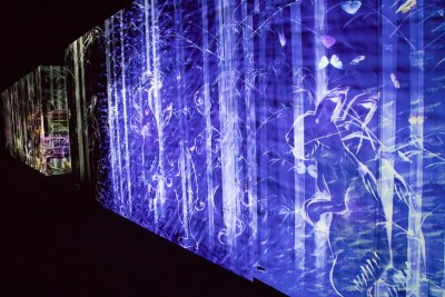 teamLab Borderless peace can be realized