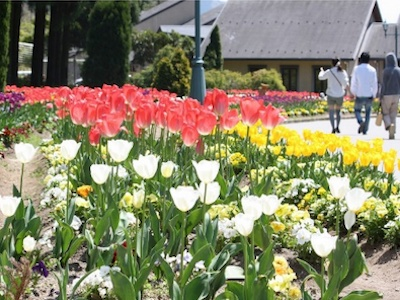N.Yodel Forest, Kanzaki Rural Park