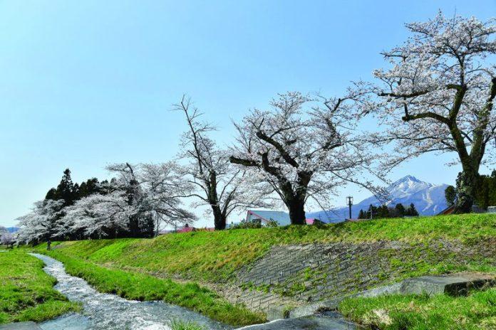 Kannonji river