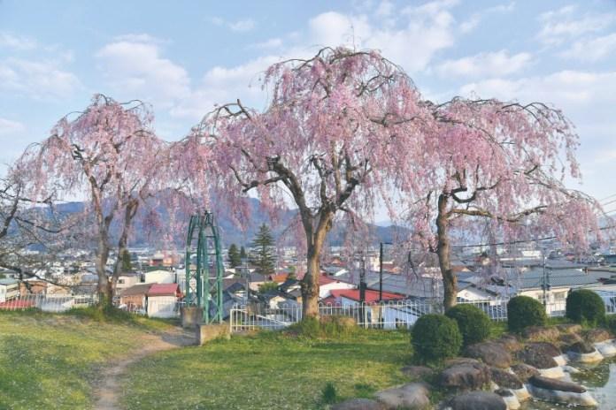 kaminoyama park