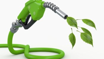 Inconvenient Study: Biofuels not as 'green' as many think – may be