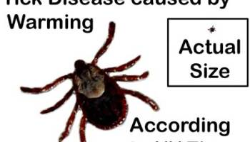 Claim: Climate is causing a Rapid Rise in Lyme Disease