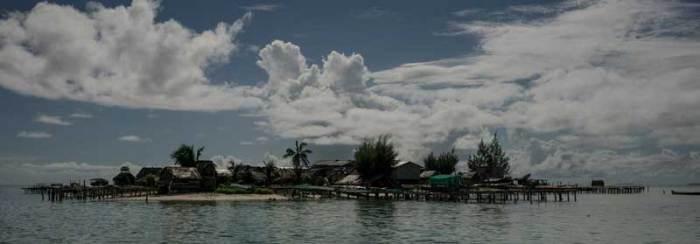 seaweed_kings_island