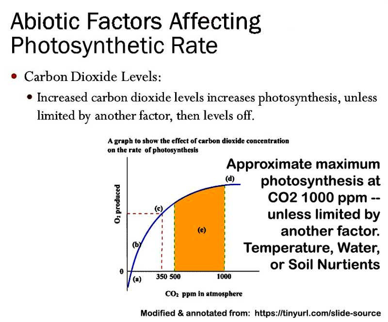 CO2_photosynthesis