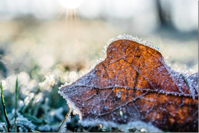 Vancouver has 'coldest Oct. 10 in 123 years' as temperatures tumble across B.C.