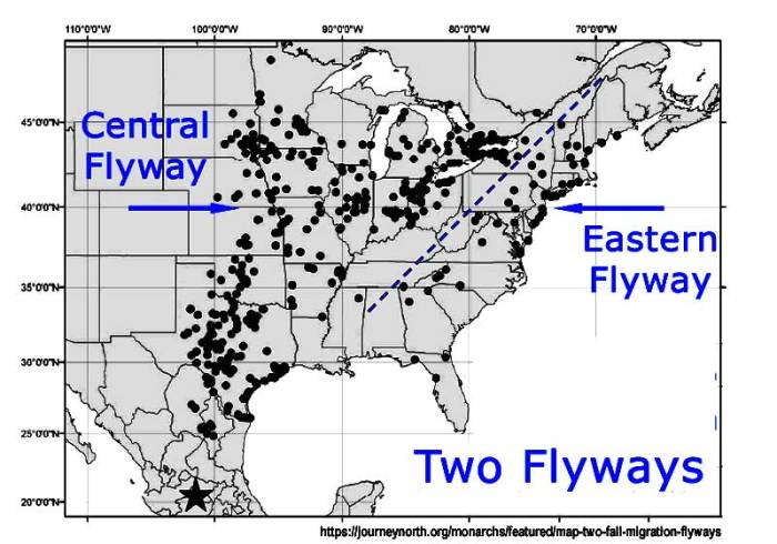 two_flyways