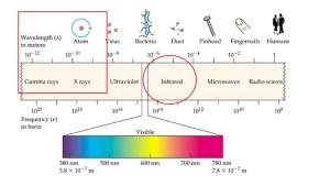 electromagnetic wavelengths.jpg