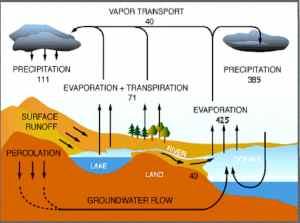 global water_cycle.jpg