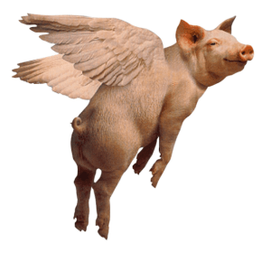flying pig.PNG