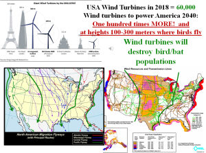 wind turbine and bird-bat-insect deaths.png