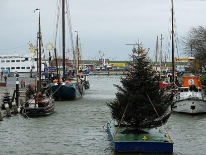 Hafen mit Baum