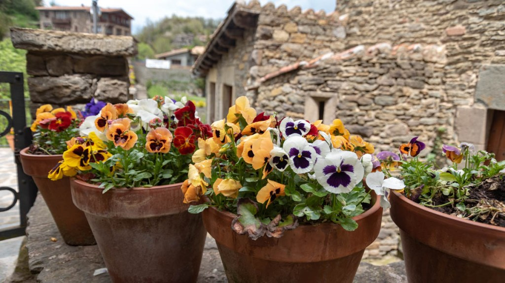 Rupit blossoms with color in spring with window boxes of violets and pansies.