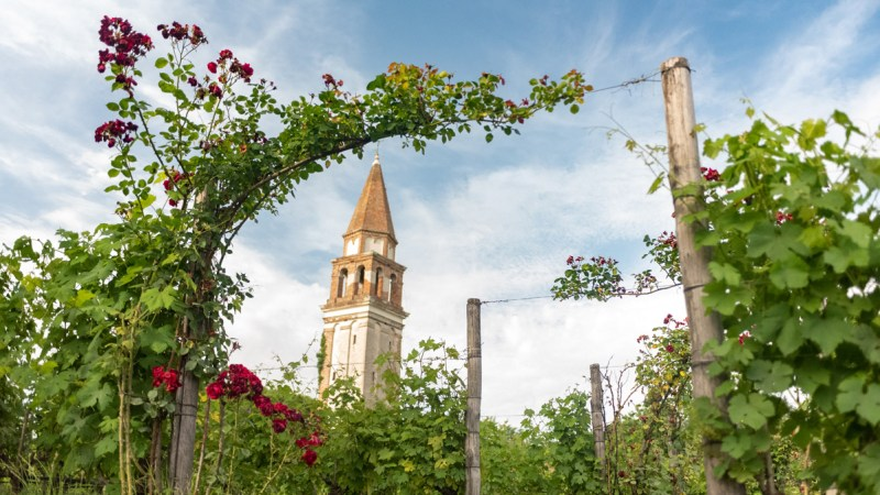 Venice on a budget: Venissa Wine Resort