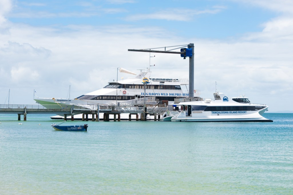 Three main ferries are the main source of Tangalooma day trips, leaving from Pinkenba on the Brisbane River.
