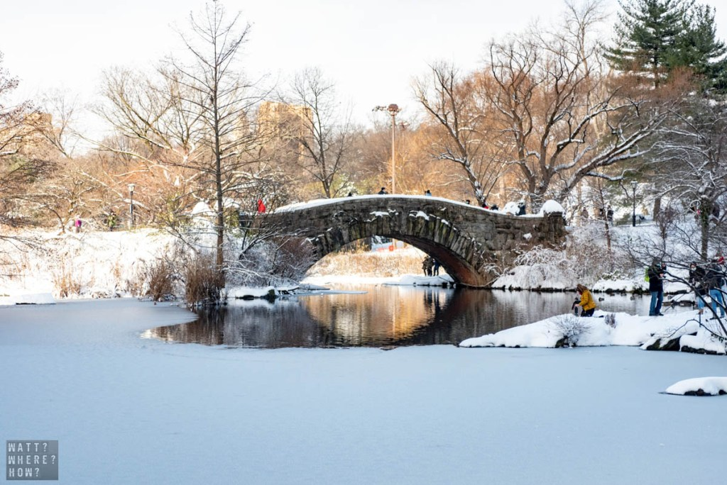 We all dream of a White Christmas in New York City that turns Central Park into a winter wonderland.