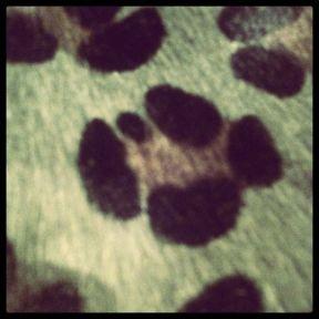 imprimé leopard vert
