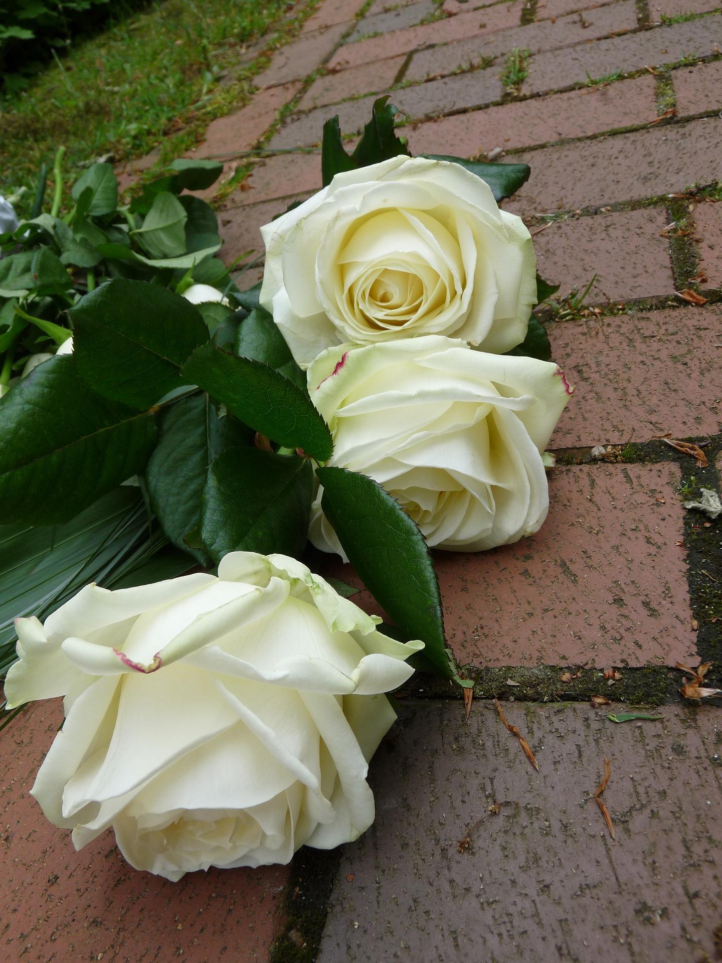 Wausau Area Obituaries March 20 Wausau Pilot Review