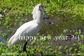 今年もどうぞよろしくお願いいたします!