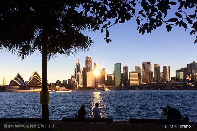 シドニーの街を入れ込んだ絶好のロケーションで親子の会話のシーン