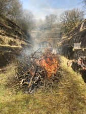 An attempt was made to burn off some of the felled material
