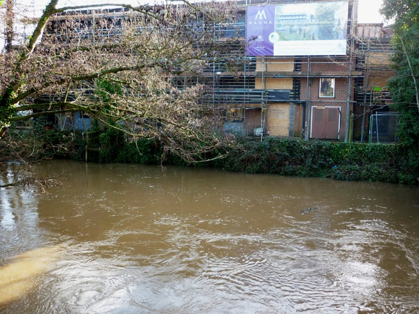 Riverside development Godalming alongside River Wey.JPG
