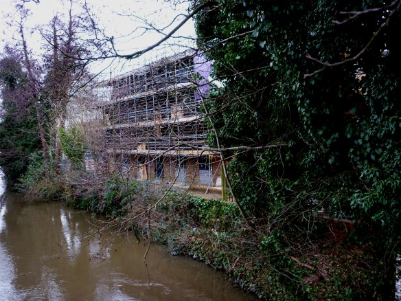 Riverside - on the river bank rear view - with balconies which will overlook the River Wey.JPG