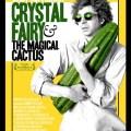 Кристал Фэйри и волшебный кактус и 2012 Crystal Fairy & the Magical Cactus and 2012 (2013)